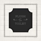 Flush the Toilet