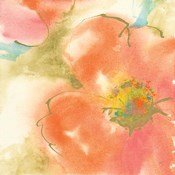 Coral Poppy I