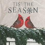 Christmas Affinity X Two Birds