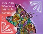 You can teach a cat