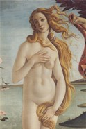 Birth of Venus, Venus