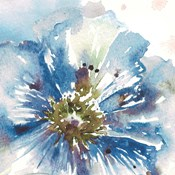 Blue Watercolor Poppy Close Up I