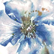 Blue Watercolor Poppy Close Up II