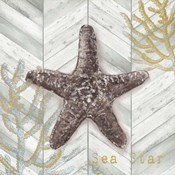 Gray Gold Chevron Star Fish