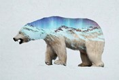 The Arctic Polar Bear