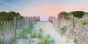 Crescent Beach Path