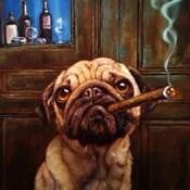 Uptown Pug