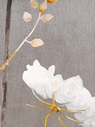 White Flower on Medium Gray