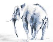 Lone Elephant Blue Gray Crop