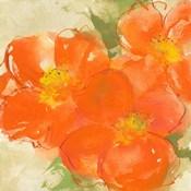 Tangerine Poppies II