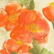 Tangerine Poppies I