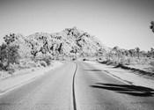 Road Trip I Crop