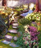 Nature's Chosen Path