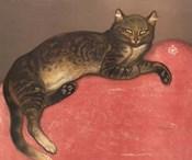Cat on a Cushion