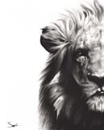 Lion II