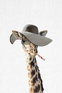 Giraffe Dressed in a Hat