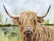 Highland Grazer I