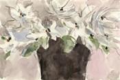 Magnolia Watercolor Study II
