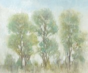 Muted Trees I