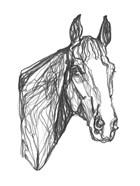 Equine Contour I