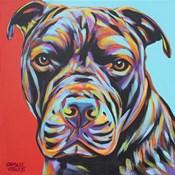 Canine Buddy III