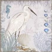 Waders II Little Egret