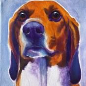 Beagle - Mason