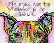 Windows To My Soul