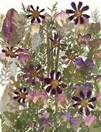 Flower Fantasy 7