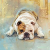 Bulldog With The Blues