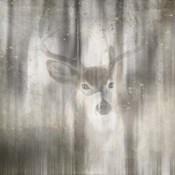 Antique Wildlife Deer 01