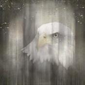 Antique Wildlife Eagle