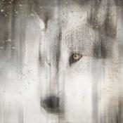 Antique Wildlife Wolf