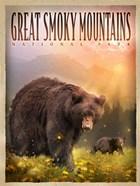Smokey Mountain Bears