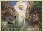 Black River Gorge