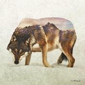 Wolf - North