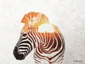 Zebra with Sun