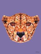 Geometric Cheetah