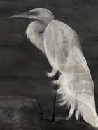 Textured Egret I