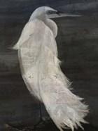 Textured Egret II