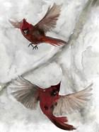 Cardinals I