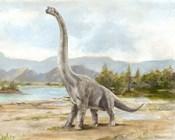 Dinosaur Illustration IV