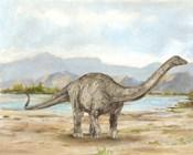 Dinosaur Illustration V