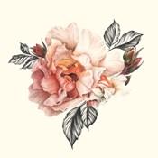 The Light of Day Rose I