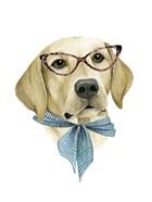 Vogue Dog IV