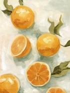 Fresh Citrus V