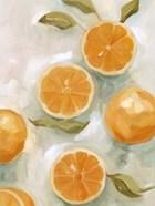 Fresh Citrus VI