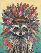 Tribal Raccoon