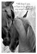 Cheers n' Foal (All that I am...)