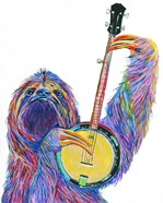 Slow Banjo